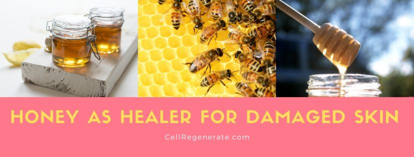 Honey as Healer for Damaged Skin - CellRegenerate.com