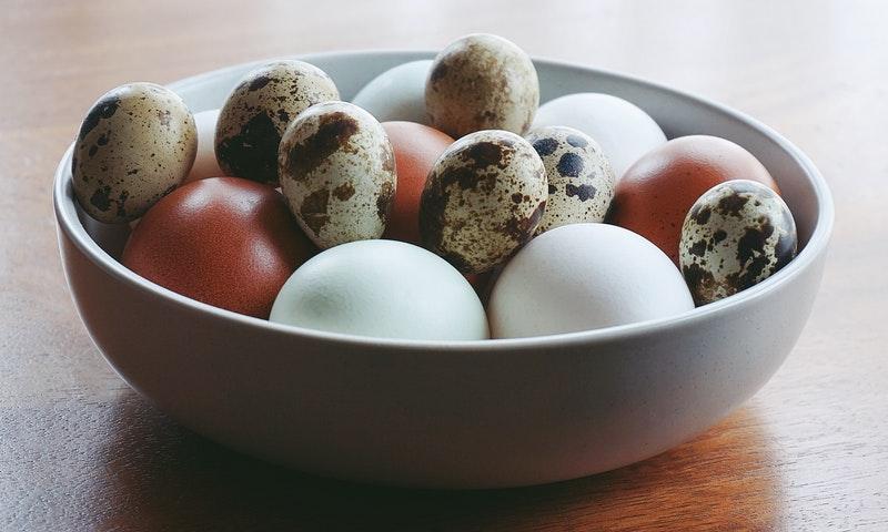 Quail eggs and chicken eggs