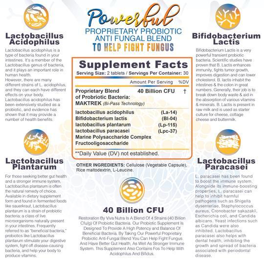 Probiotic anti fungal info